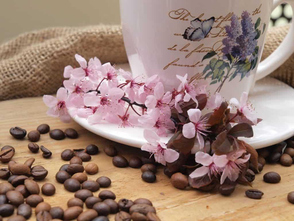Saluting you with coffee | Jackie Keswick